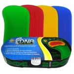 (F)Palmilha Dna Beta B210 Ortho Pauher   B210